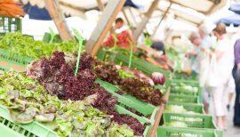 3. Völkermarkt Biomarkt